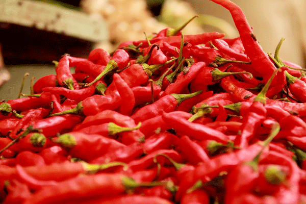 red-pepper
